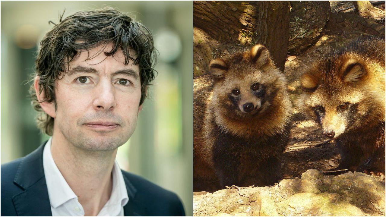 El mundo toma el pulso a la pandemia.El virólogo Christian Drosten y dos ejemplares de tanuki, especie conocida también como perro mapache