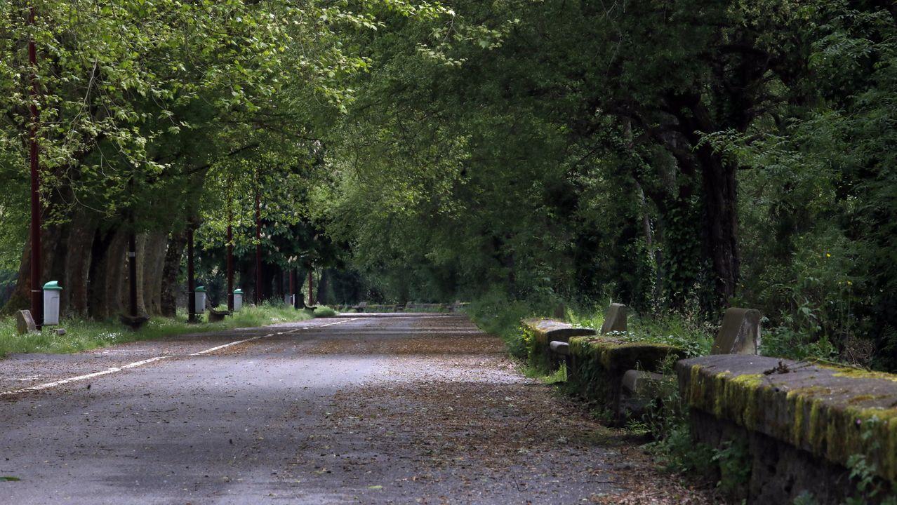 Y los lucenses volvieron a pisar la calle.Paseo fluvial del Miño vacío.