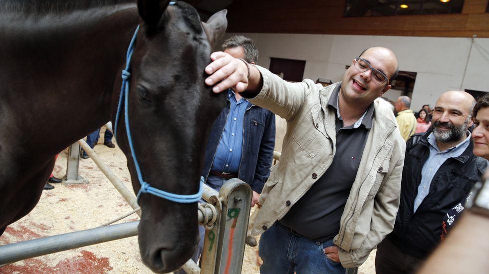 Las fiestas de la Ascensión, en campaña. Rubén Cela y Nestor Rego en el concurso caballar