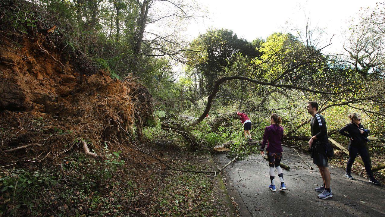 El rastro de la tormenta «Amelie» en Asturias.Bombeiros de Vilalba