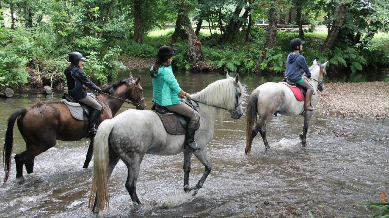 Los caballos abarrotan Moeche en la Feira do 23 de Abril