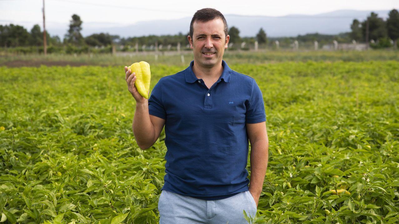 El único productor de la IXP posa con un pimiento en su finca de la comarca verinesa