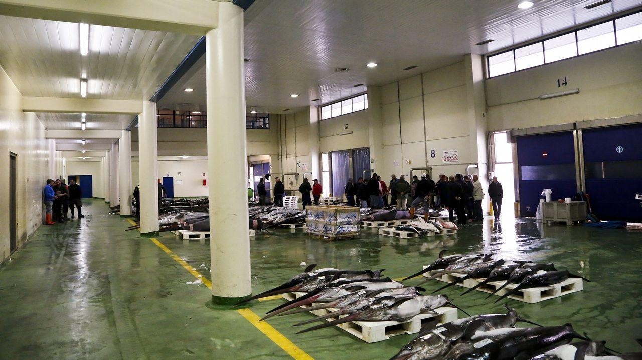Así esla plantaque BMW acaba de inaugurar en México.La joven atropellada está ingresada en el Hospital Álvaro Cunqueiro de Vigo