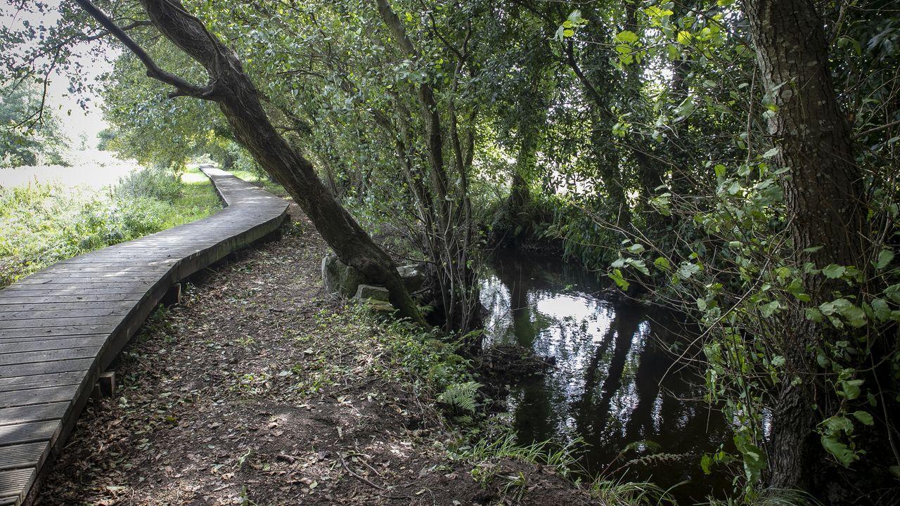 Ribeira. El trazado al borde del río Arlés permite a los caminantes y excursionistas perderse por la naturaleza en un recorrido de seis kilómetros de largo habilitado y accesible a todas las edades
