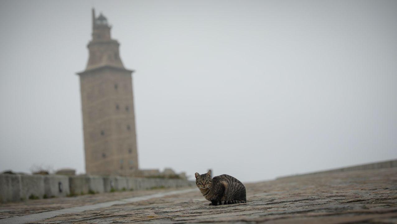 Imagen del exterior de la Torre de Hércules, en A Coruña
