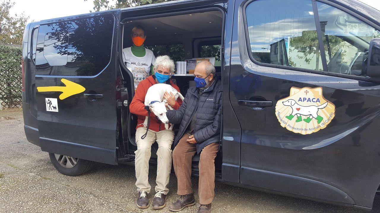La furgoneta dará servicio integral a los peregrinos caninos en el propio Camino Francés