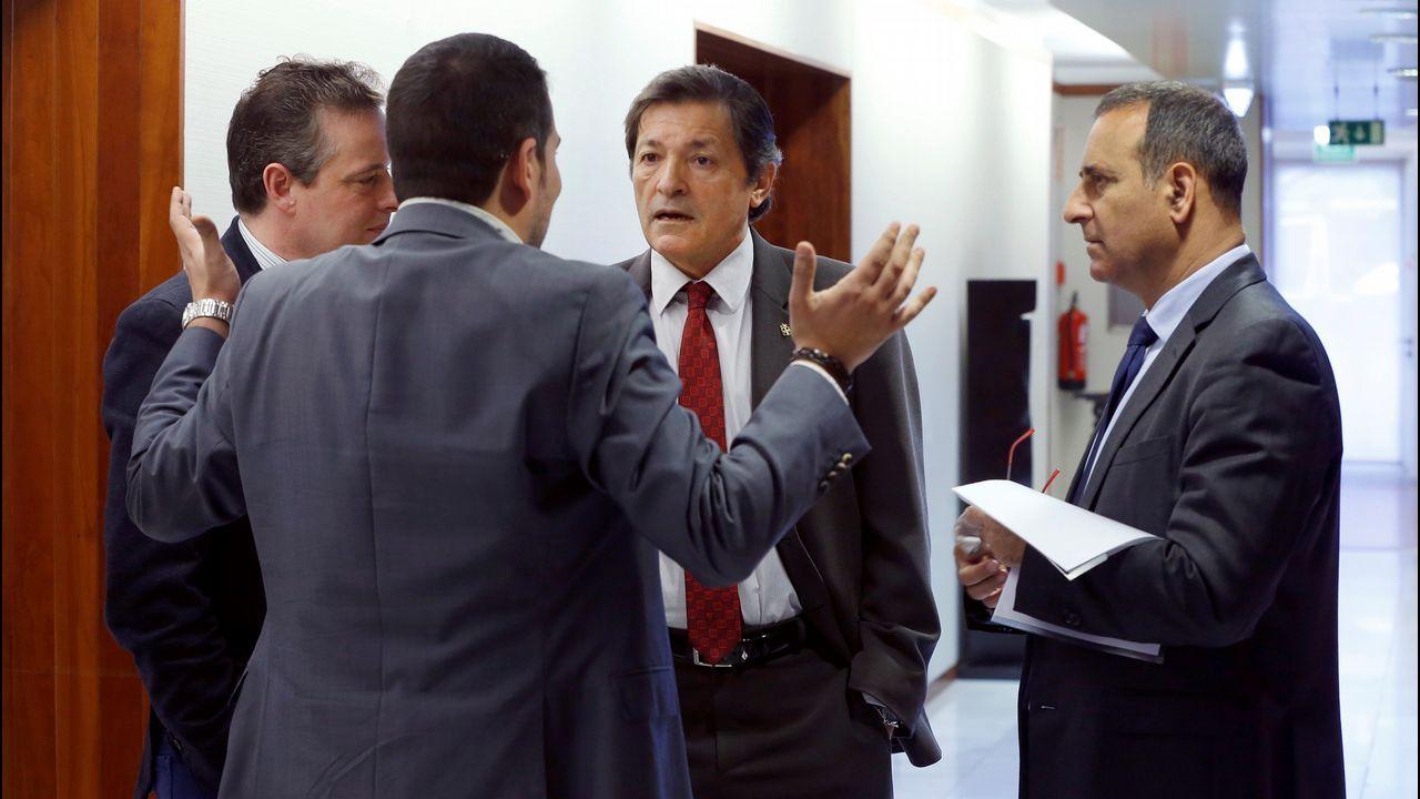 Feijoo.El presidente del Principado, Javier Fernandez (2d), acompañado del consejero de Infraestructuras, Ordenación del Territorio y Medio Ambiente, Fernando Lastra (d) y los diputados de su partido, Marcelino Lindez (i) y Nino Torre (2i), en los pasillos de la junta