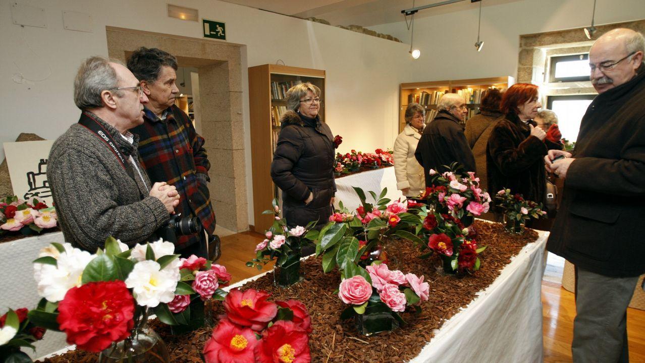 Ourense salió a la calle.Irregular desde el 2015. El contrato de mantenimiento del ascensor panorámico del monte de San Pedro finalizó en marzo del 2015. Desde aquel entonces el servicio se presta de forma irregular, a través de facturas que deben ser legalizadas por el alcalde o por el pleno. Ese es el caso de la mensualidad del pasado diciembre, que asciende a 19.409 euros. Pese al tiempo transcurrido, el gobierno local no ha puesto en marcha la licitación de un nuevo contrato