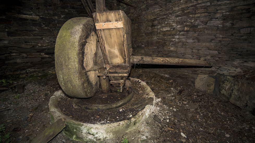 Otra imagen del molino de la señora Concha, en la que se distingue la rueda de granito, la pila y el recipiente de madera usado para verter las aceitunas durante la molienda