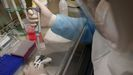 Test para la detección del coronavirus