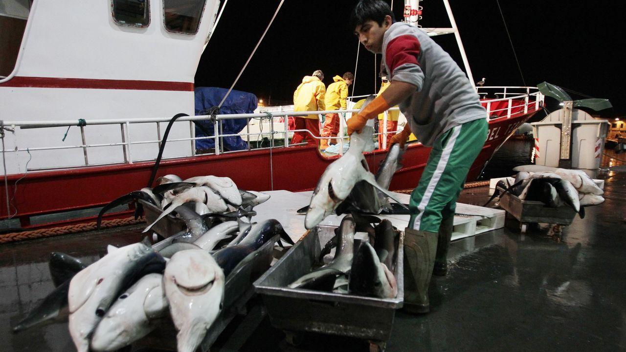 Pescadores y mariscadores de Barbanza, concentrados el pasado 26 de marzo en Ribeira, en protesta contra el futuro Reglamento de Control Pesquero de la UE