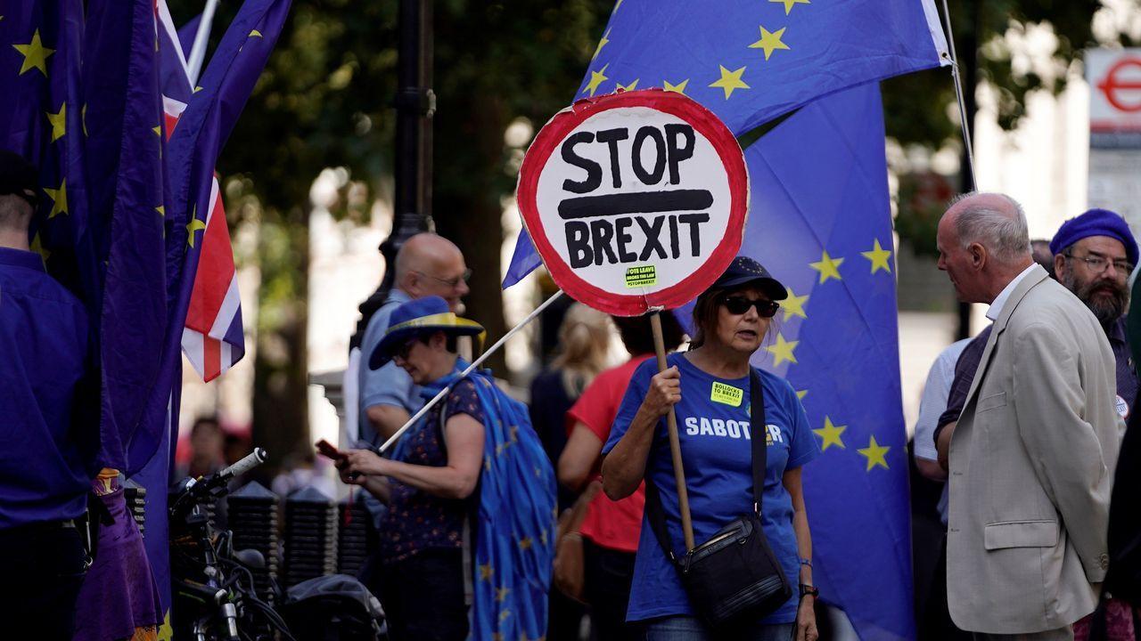 Activistas anti«brexit» se manifiestan en Westminster