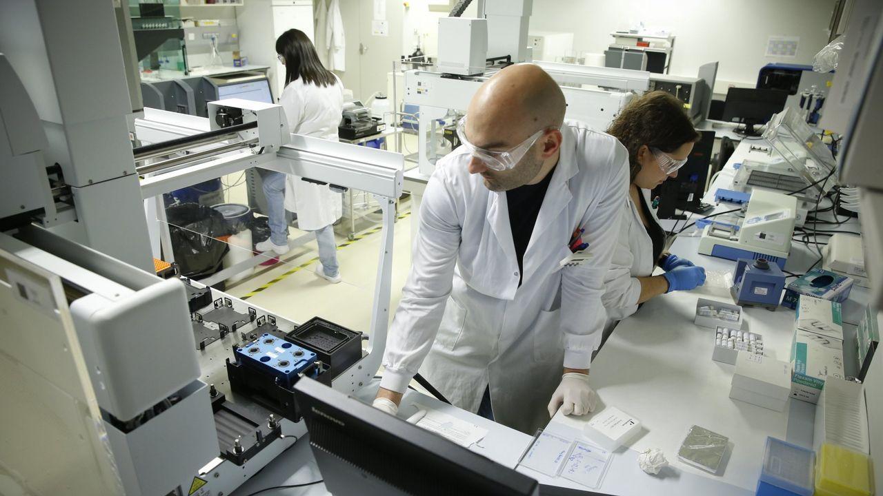 Un sistema predice la aparición de la migraña media hora antes de que surja.La autopsia al calamar gigante fue realizada en Luarca (Asturias), donde se encuentra el animal, por un equipo del IIM de Vigo y por miembros del Cepesma