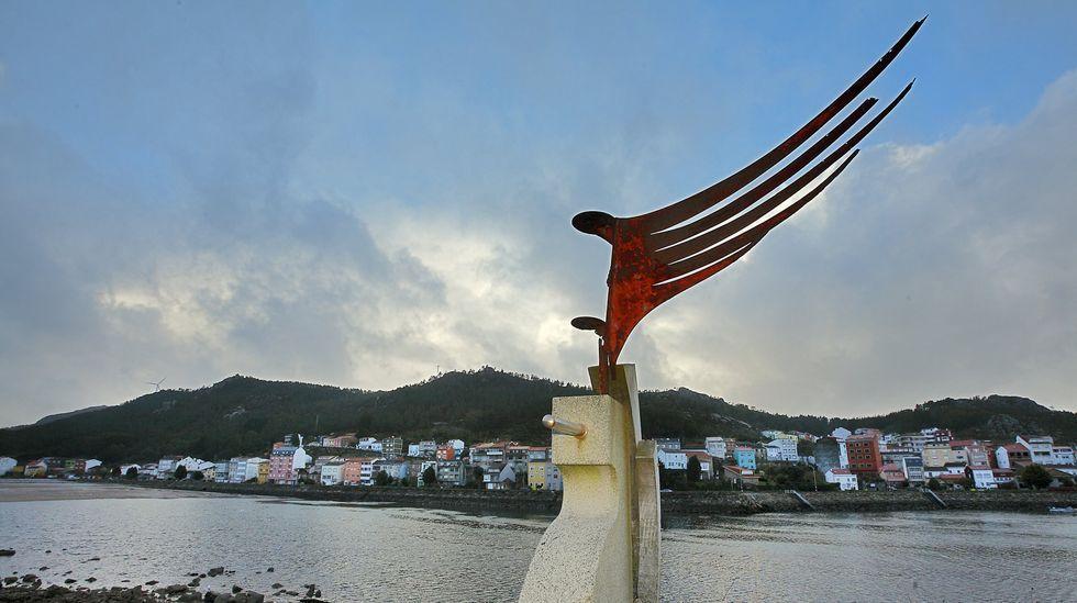 La puesta en valor del percebe de A Barca, en Muxía, es uno de los proyectos