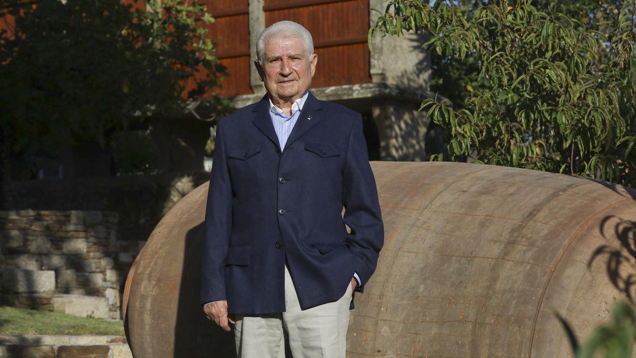 La carga de las cepas es elevada esta cosecha en las viñas del Quiroga