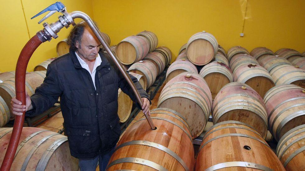 Bodegas como Algueira realizaron en los últimos años pruebas con barricas de roble gallego