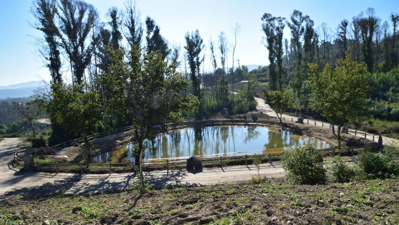 La laguna está en el monte Maruxento y tiene capacidad para dos mil metros cúbicos.