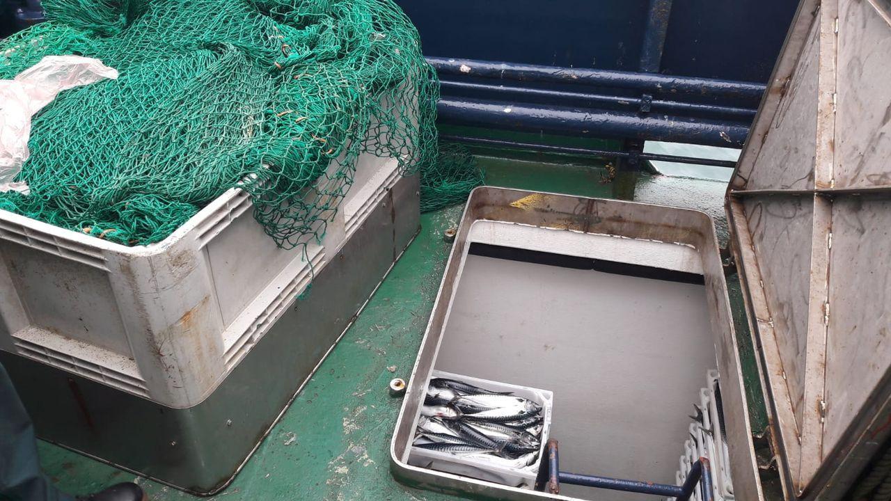 A la izquierda, la caja que tapaba la bodega oculta en el pesquero sorprendido en Burela con 273 cajas de caballa ilegal a bordo. Según la Guardia Civil, esa bodega no aparece en los planos del barco
