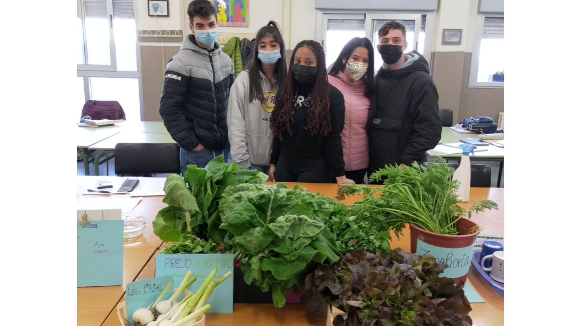 huerto escolar asturias.Las verduras que se pusieron a disposición del profesorado