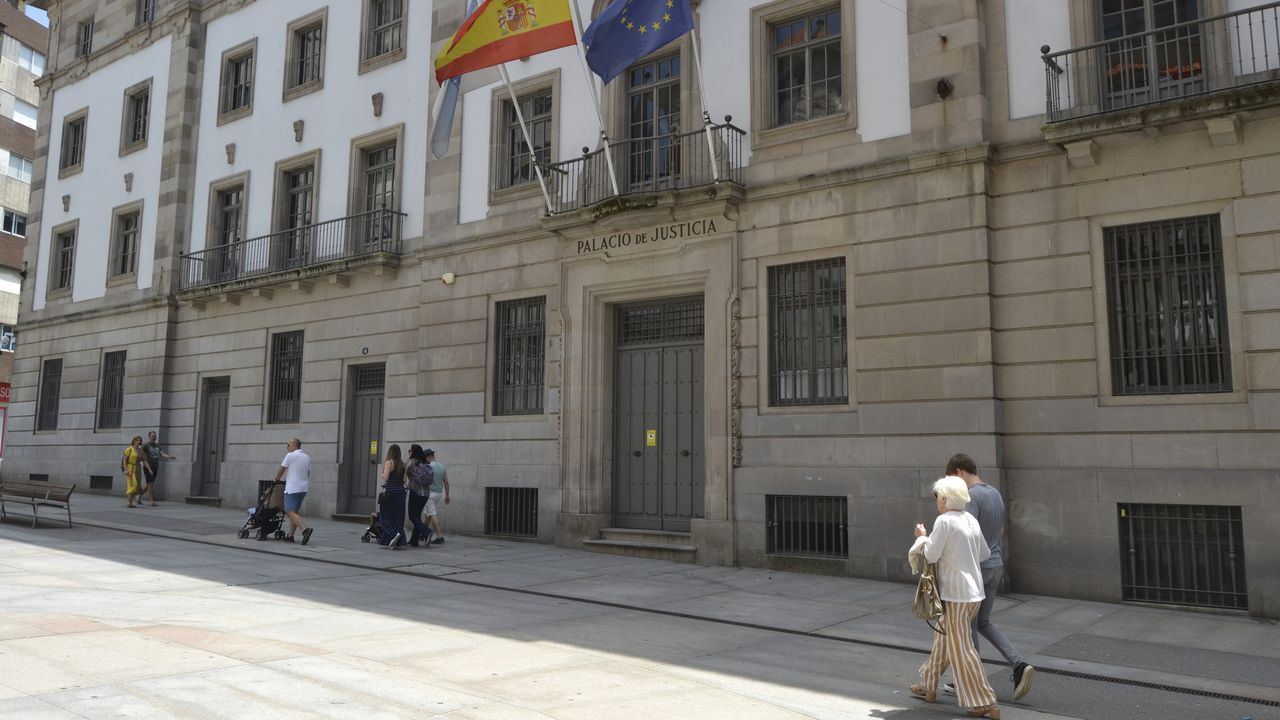 Perro abandonado en Oviedo