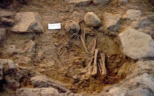 Combo ciencia brexit.El cráneo de una antigua cazadora-recolectora de Rumania (izquierda) carece de una sobremordida observada en el cráneo de un griego de hace 2.500 años