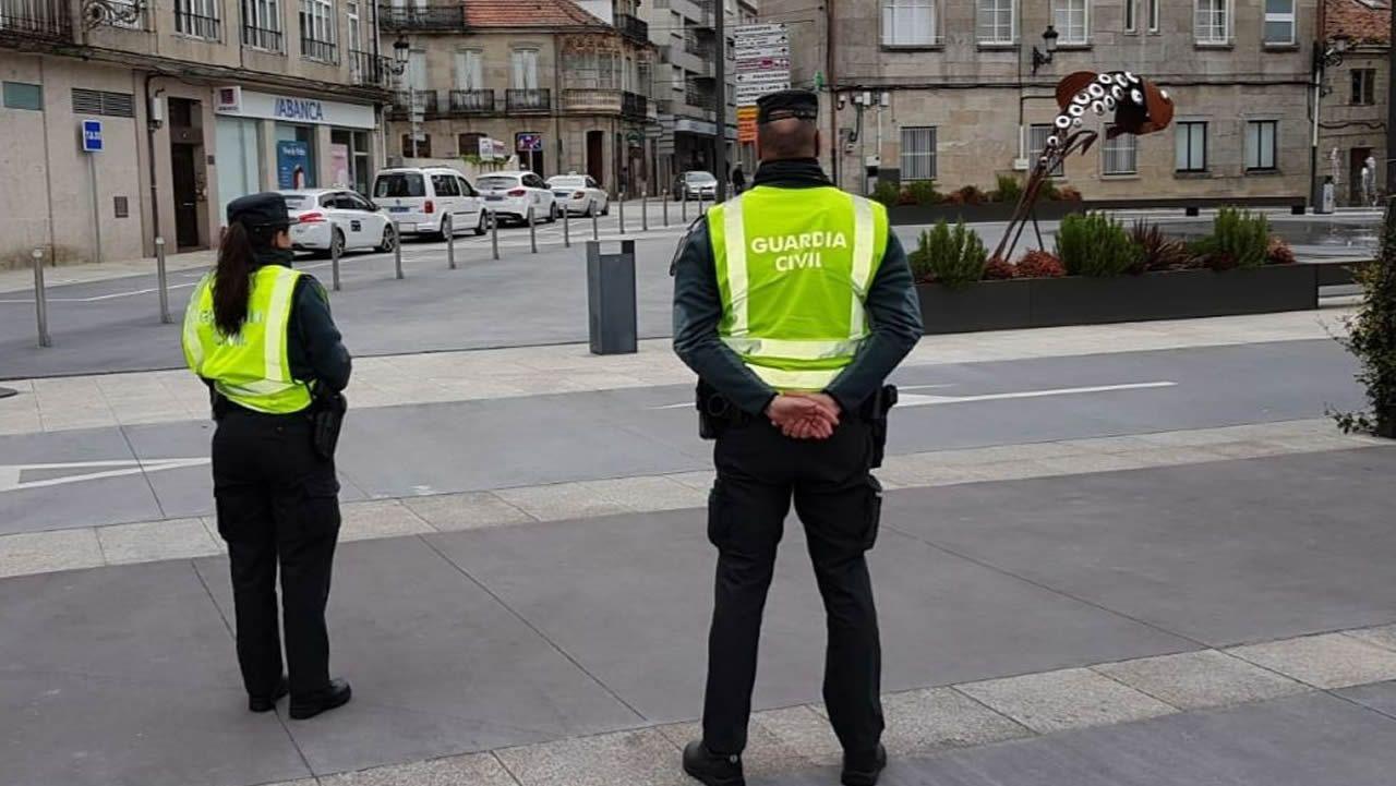 Los héroes del Covid-19 detrás del mostrador.Perros paseando por una calle de Oviedo. La ciudad cuenta con lugares especiales para soltarlos sin peligro