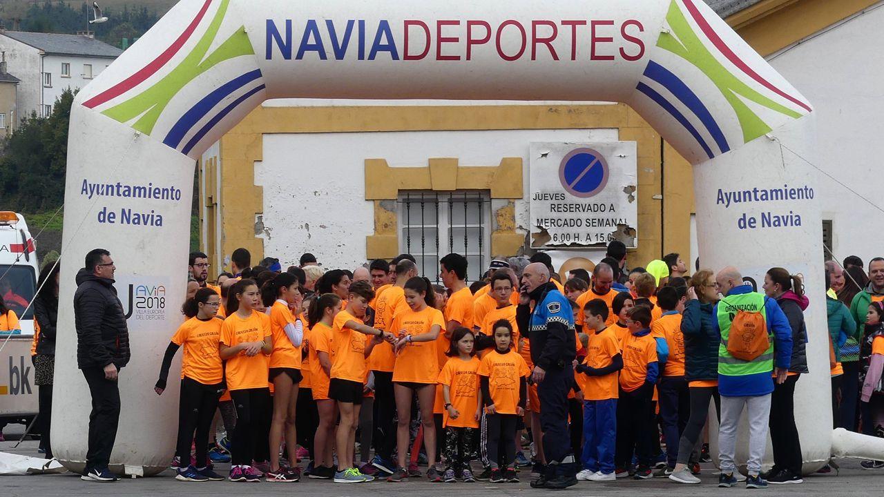 Asturias cambia el azul por el naranja contra el cáncer infantil.Ejemplar de velutina o avispa asiática