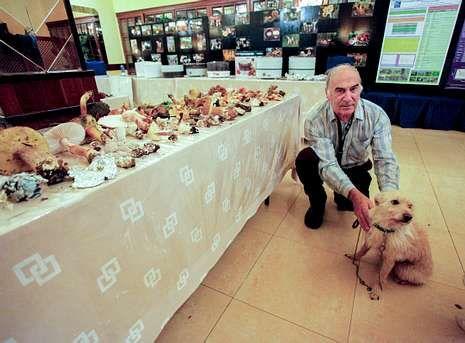 Al encuentro acudieron expertos franceses con perros con los que buscan setas bajo tierra.