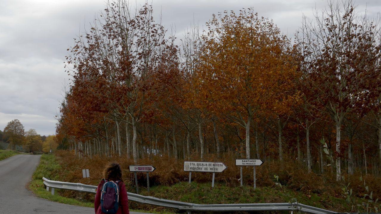 El Camiño Primitivo se zambulle en el otoño.El centro de Lugo, vacío, hace unos dias