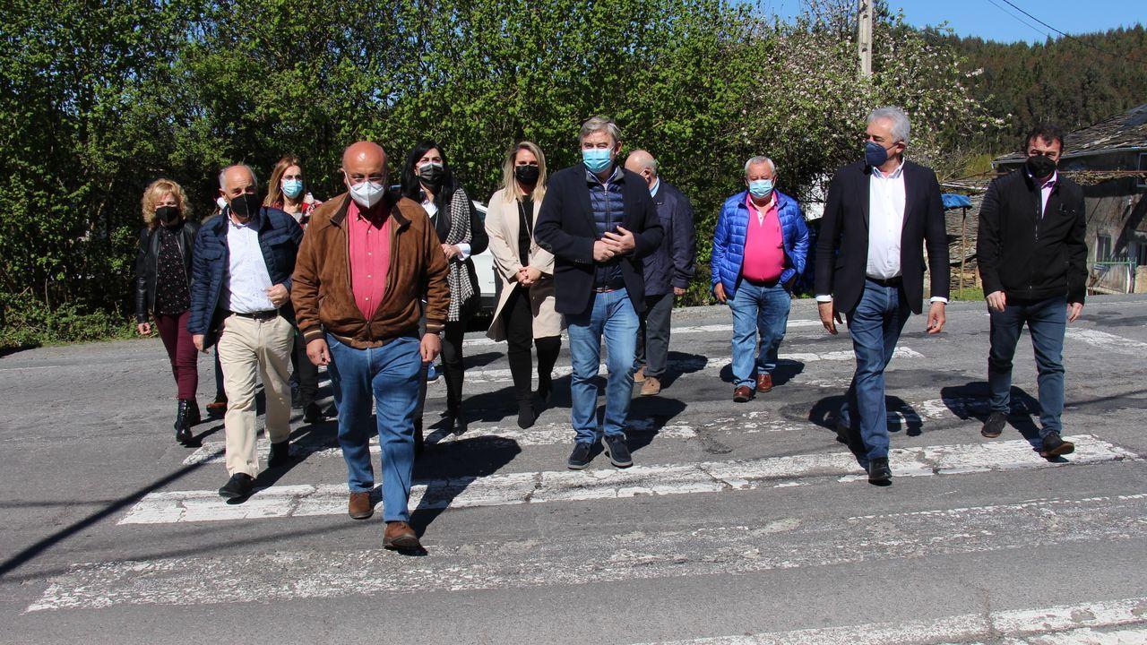 Alcaldes y cargos del PP se movilizaron en Guntín por el mal estado de la carretera N-540
