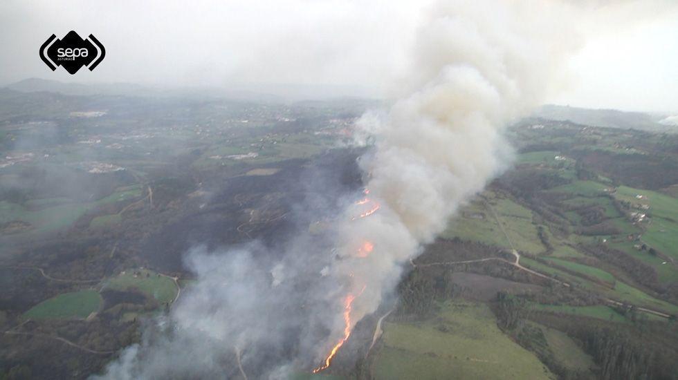 Uno de los incendios acaecidos en Asturias en diciembre 2015.Uno de los incendios acaecidos en Asturias en diciembre 2015