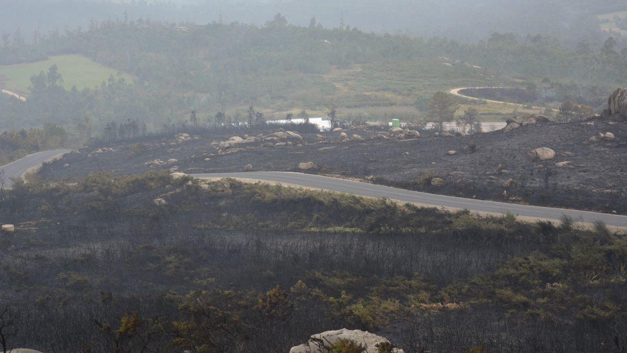 Miles de personas se manifiestan en Santiago contra la política forestal de la Xunta.Los efectivos de la UME luchando contra el incendio de Seroiro