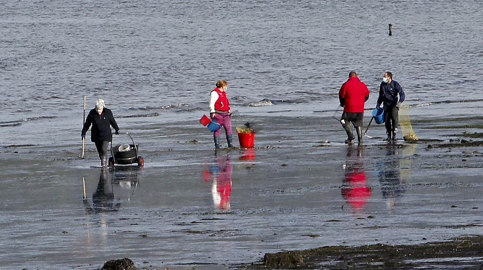 Así se conmemora el Día del Medioambiente en Pontevedra.El marisqueo es una de las principales actividades marítimas en la ría de Pontevedra