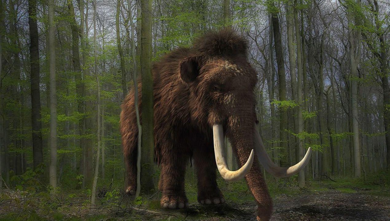 Recreación de un mamut, especie que habitó el entorno de Las Caldas en el paleolítico. En la cueva se encontraron restos de al menos un ejemplar