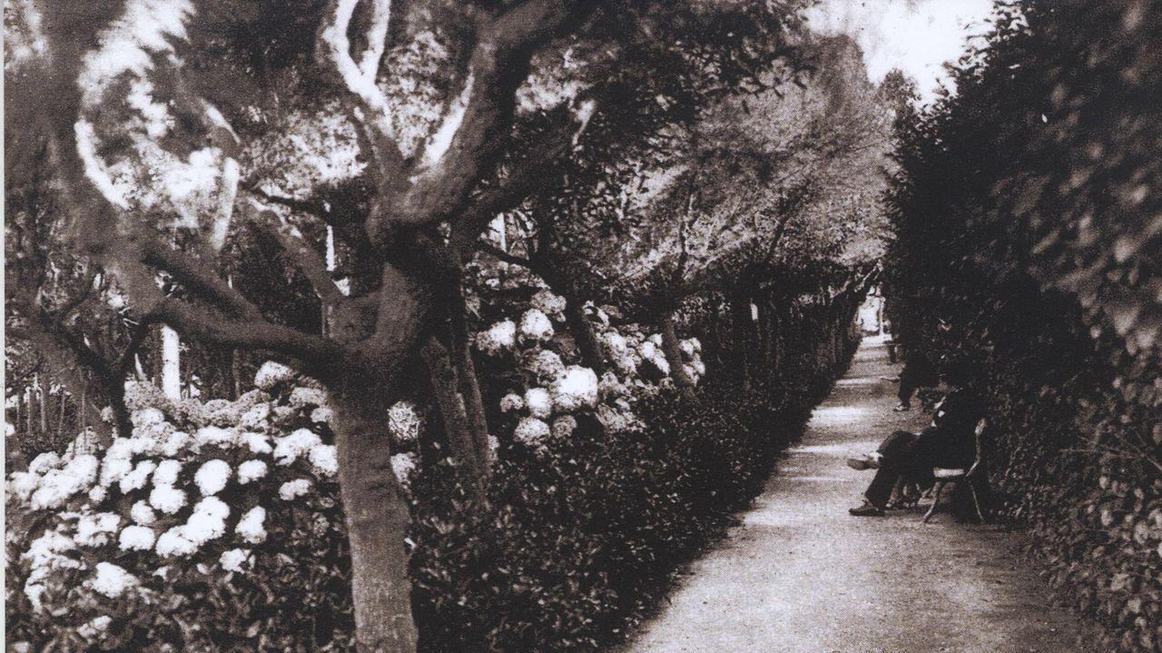 Jardines de Riazor