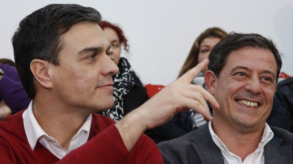 Besteiro renuncia como candidato a la Xunta