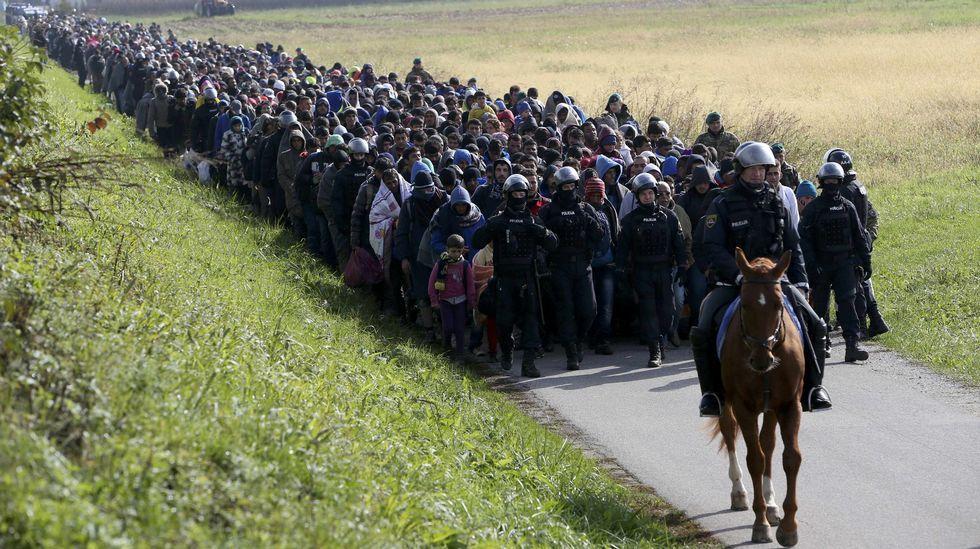 Policía montada conduce una columna de inmigrantes y refugiados cerca de Dobova, en Eslovenia