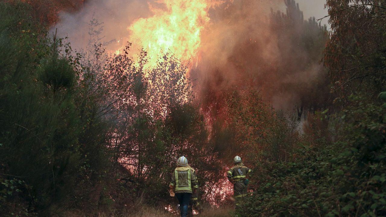 Los bomberos de Vigo comienzan la primera huelga de su historia.Marina Pineda, portavoz de la Junta de Gobierno local de Gijón,