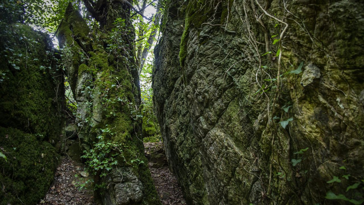 Os Grobos es un bosque de cuento lleno de pasadizos entre paredes de rocas, musgo y helechos