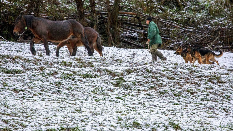 Nieve en Campomanes