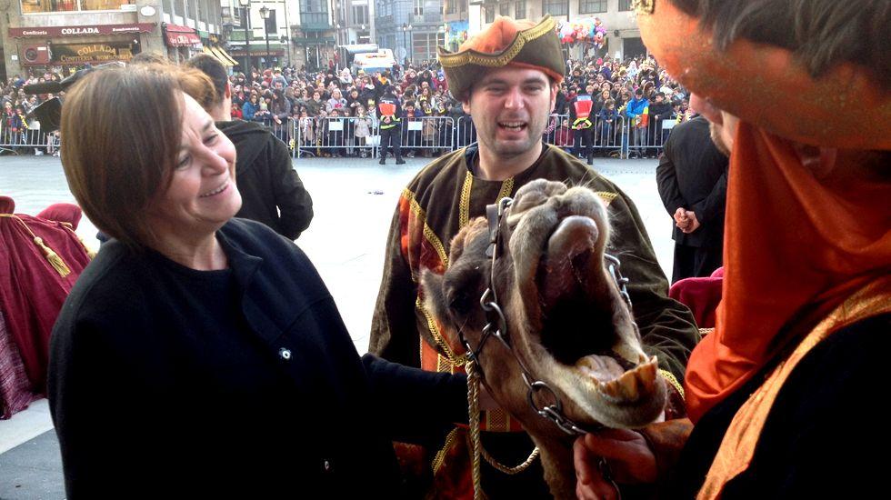Carmen Moriyón, junto a la camella del Rey Melchor