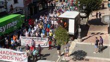 Manifestación Ganadera Cangas de Onís