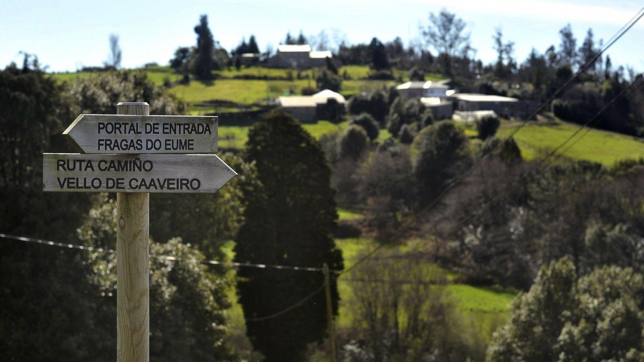 Los grelos y la carne de carnaval avivan las ventas en el mercado.Foto de archivo del pantano de As Forcadas, situado en Valdoviño.