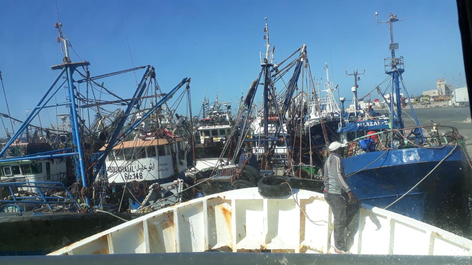 arrastrero .Enjambre de mástiles en un colapsado puerto de Dajla