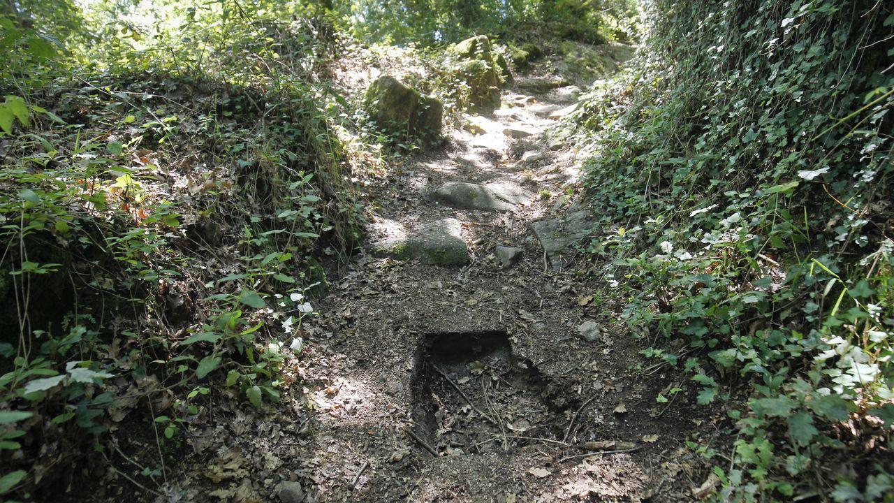 Roban piedras talladas en la zona del Sarela.El escritor, gestor cultural y exministro socialista César Antonio Molina
