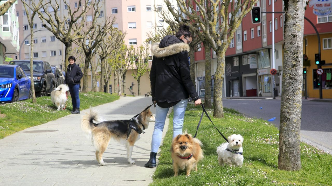 Foto de archivo de una persona paseando a sus perros durante el primer Estado de Alarma, en Lugo