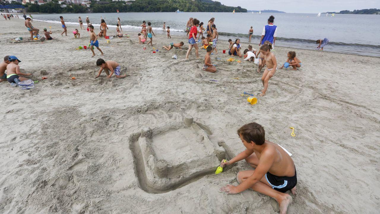 El zorro de la playa de Altar, capturado en una jaula.Prohibido el baño en la playa de San Lorenzo, en Gijón