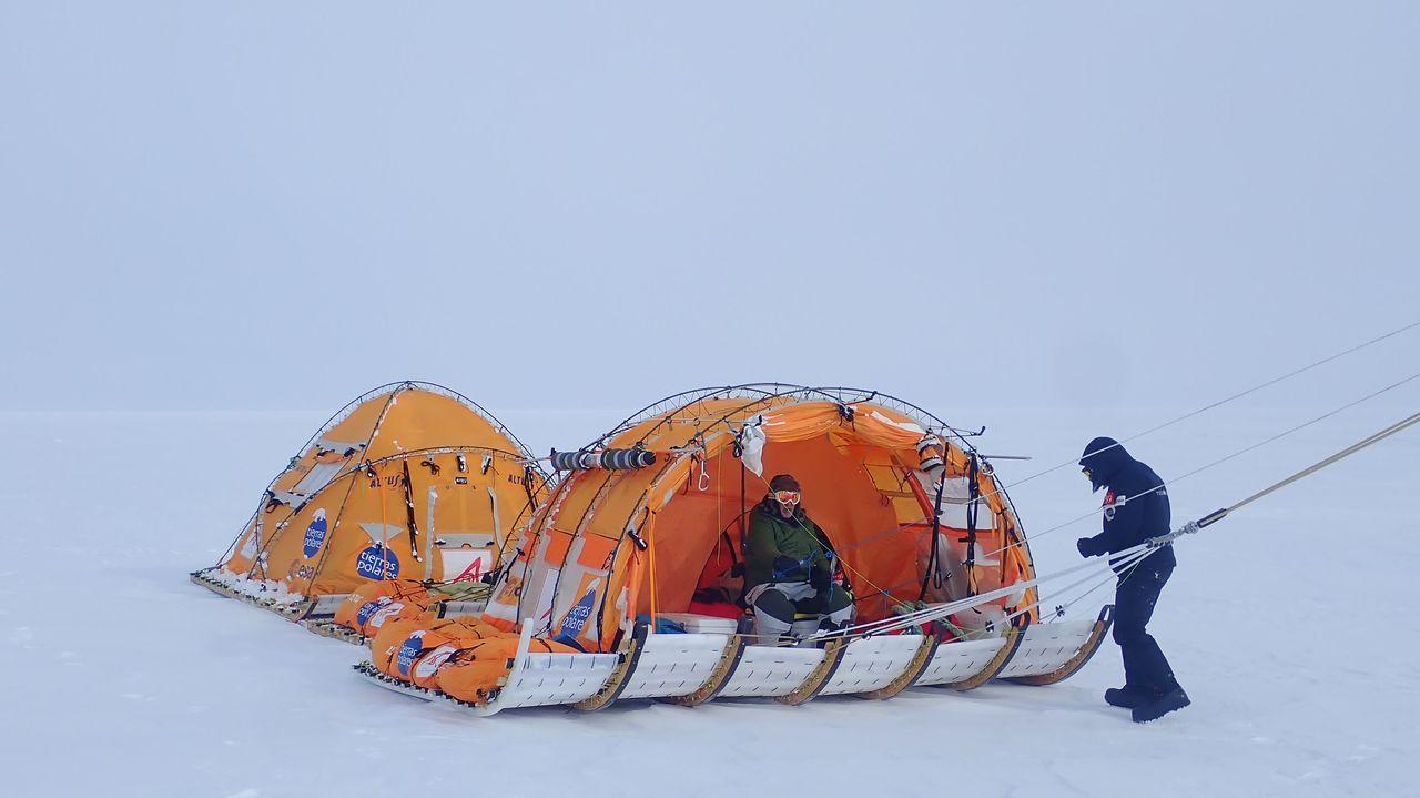 La expedición Antártida inexplorada.Un halcón peregrino entre los rascacielos de Nueva York