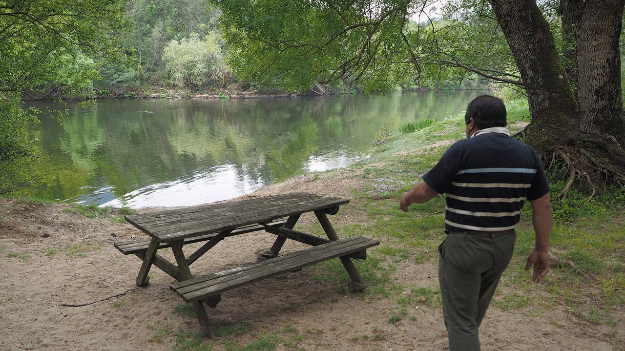 Así es la pesca de la lamprea en el Ulla, en Carcacía.Los diputados del PP de Pontevedra visitaron el tramo junto a representantes de la Asociación Amigos do Camiño Portugués a Santiago