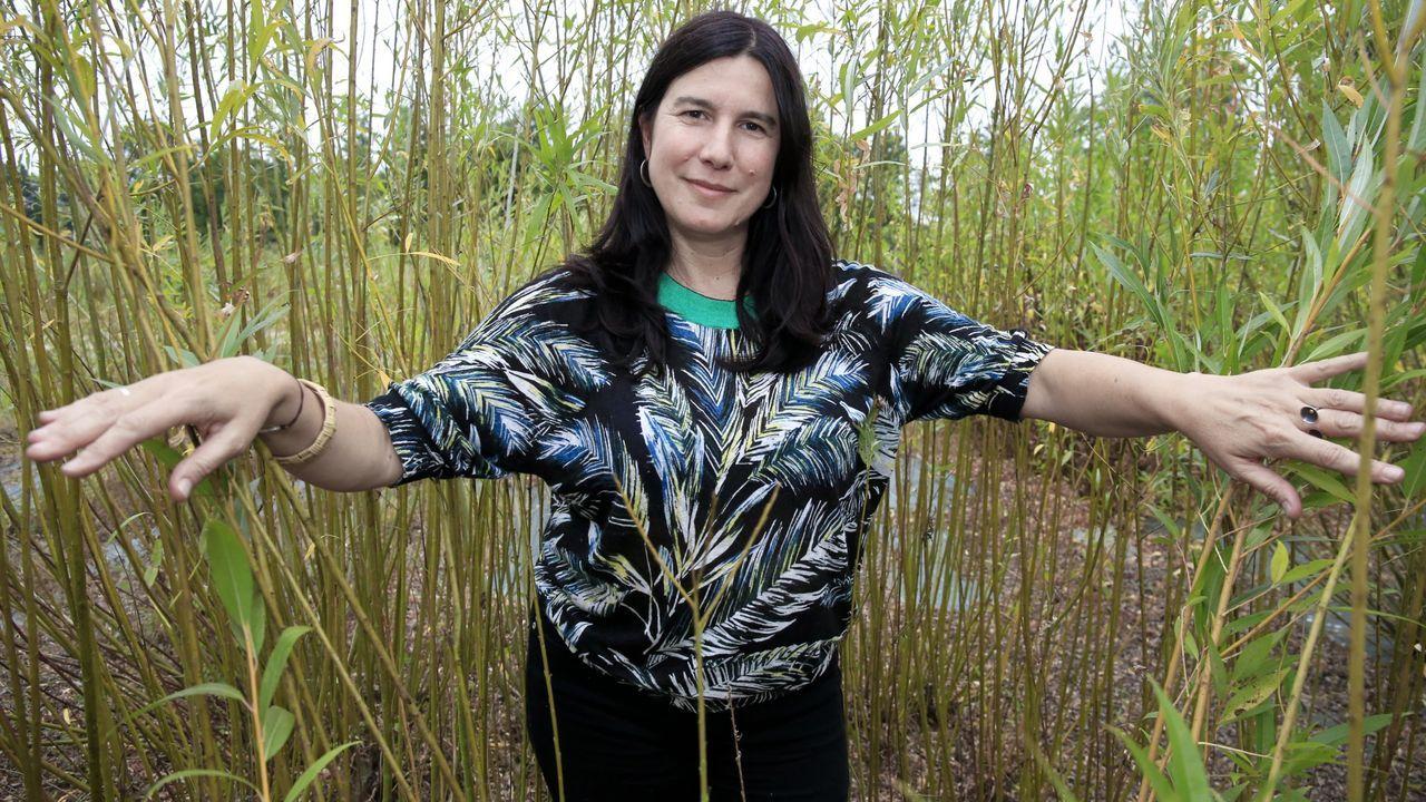 Idoia Cuesta cultiva o vimbio que emprega para realizar as pezas de cestería